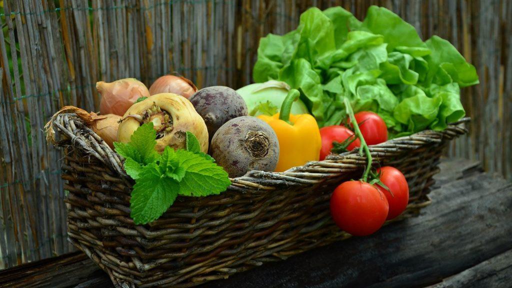 Un coupe-légumes professionnel pour faciliter vos préparations